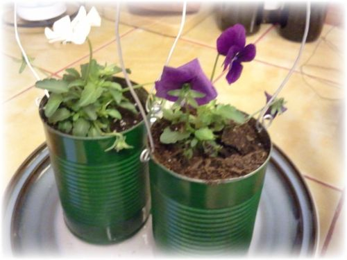 Upcycled Tin Can Flower Pots - 10a