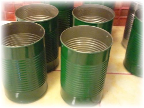 Upcycled Tin Can Flower Pots - 5