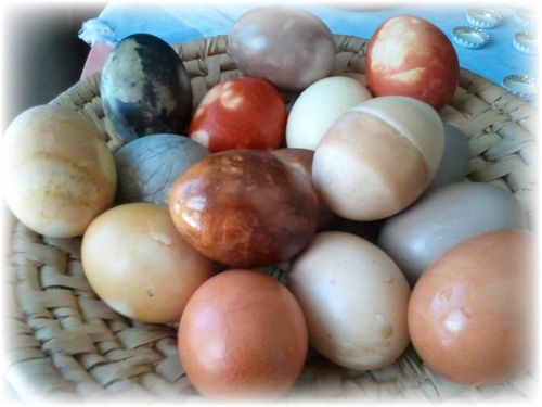 Natural Dyed Eggs 10