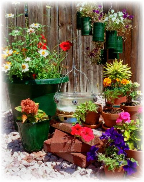 Upcycled creamer bottles into planting pot - Pic 11