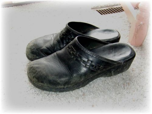 Painted Shoes - Before