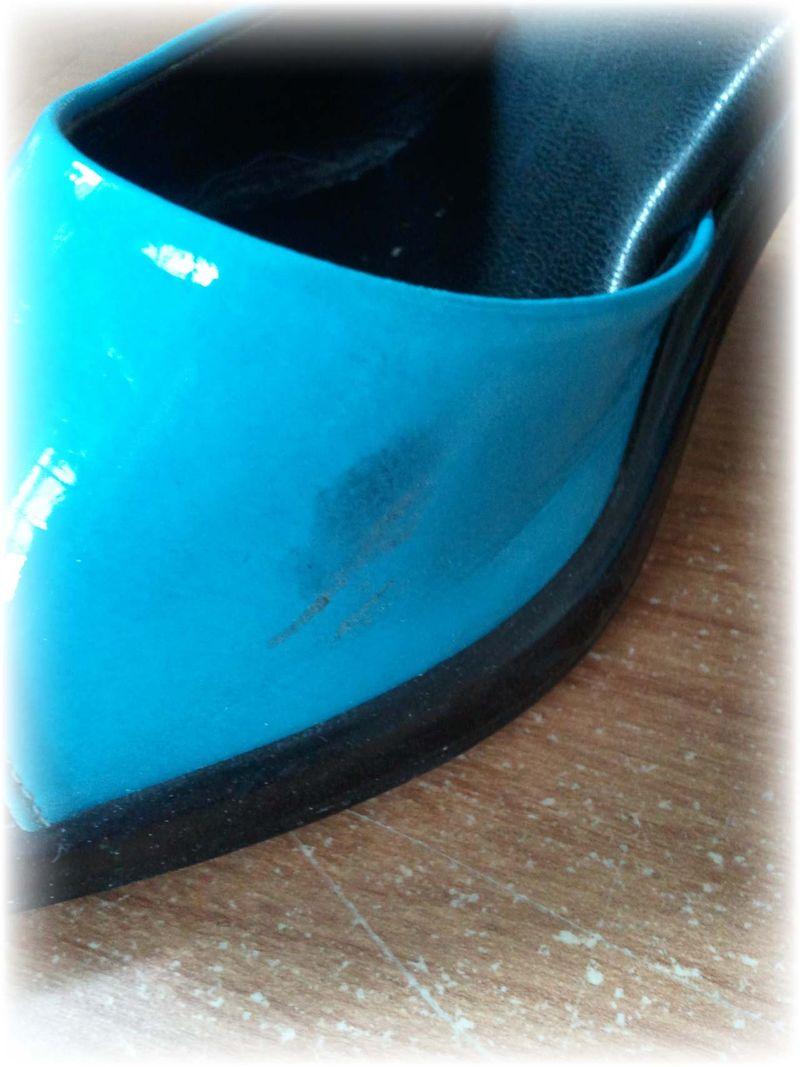Upcycled Shoe 2