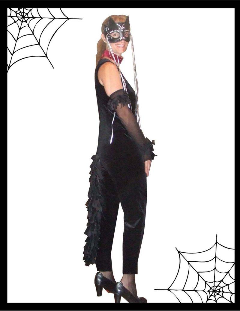 Cat costume 1b