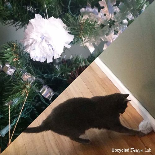 Christmas tree decoration or Cat Toy
