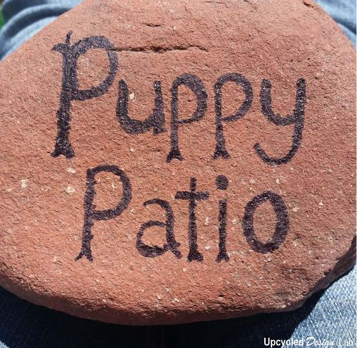 Painted Rock Puppy Patio Pic 3