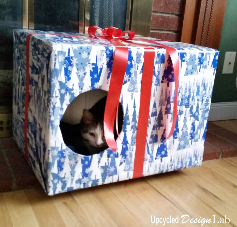 Cat Boxes Pic 5