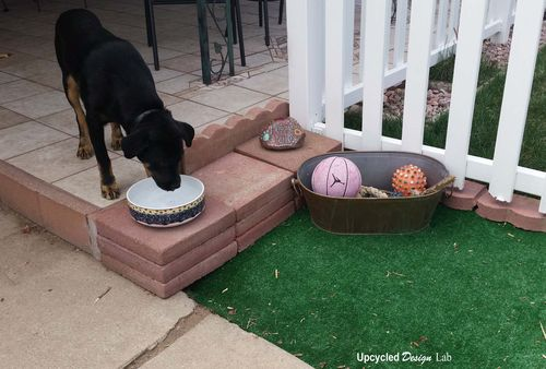 Painted Rock Puppy Patio Pic 10